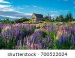 church of the good shepherd and ... | Shutterstock . vector #700522024