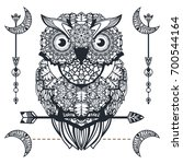 vector decorative owl with... | Shutterstock .eps vector #700544164