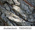 tree bark texture background. | Shutterstock . vector #700545010