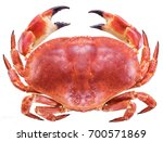 cooked brown crab or edible... | Shutterstock . vector #700571869