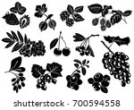 collection black silhouettes of ... | Shutterstock .eps vector #700594558
