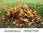 pile of fallen leaves in autumn ... | Shutterstock . vector #700657534