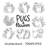 funny pugs and flowers. cartoon ... | Shutterstock .eps vector #700691953