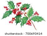 branch mistletoe isolated on... | Shutterstock . vector #700693414