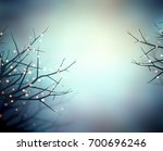 Magical Sparkles On Branches In ...