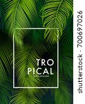 tropical palm background.... | Shutterstock .eps vector #700697026