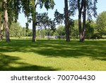 the grass field at the park... | Shutterstock . vector #700704430