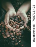 hand holding aromatic cocoa... | Shutterstock . vector #700718428