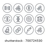 genetics line icons on white ... | Shutterstock .eps vector #700724530