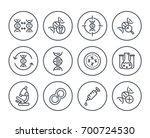 genetics line icons on white ... | Shutterstock .eps vector #700724530