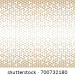 abstract geometric hipster... | Shutterstock .eps vector #700732180
