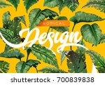 bright tropical background with ... | Shutterstock .eps vector #700839838