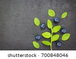 blueberries fresh on a green... | Shutterstock . vector #700848046
