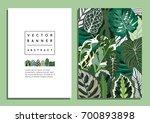 trendy summer botanical... | Shutterstock .eps vector #700893898