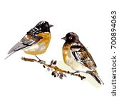 two birds on a branch in... | Shutterstock . vector #700894063