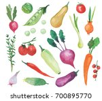 set made of hand drawn... | Shutterstock . vector #700895770