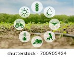 icons and field on background.... | Shutterstock . vector #700905424