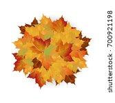 vector autumn fallen leaves.... | Shutterstock .eps vector #700921198