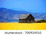 Cabin Old Homestead On...