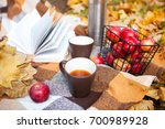 picnic in park for two and... | Shutterstock . vector #700989928