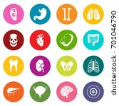 human organs icons many colors... | Shutterstock .eps vector #701046790