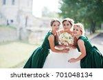 fabulous bride walking  posing... | Shutterstock . vector #701048134