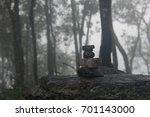 pine forest in fog | Shutterstock . vector #701143000