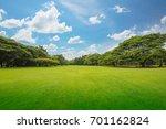 green grass green trees in... | Shutterstock . vector #701162824
