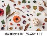autumn composition full of... | Shutterstock . vector #701204644