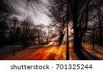 Park In Winter Season