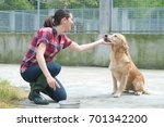 Stock photo animal shelter volunteer feeding the dogs 701342200