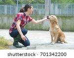 Animal Shelter Volunteer Feeding Dogs - Fine Art prints