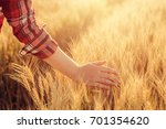 female farmer touching wheat... | Shutterstock . vector #701354620