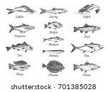 vector hand drawn set of fish... | Shutterstock .eps vector #701385028