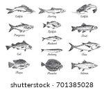 Vector Hand Drawn Set Of Fish...
