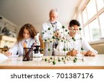 senior teacher teaching biology ... | Shutterstock . vector #701387176