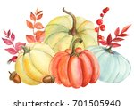 beautiful composition of a... | Shutterstock . vector #701505940