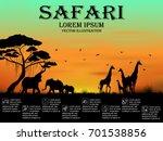 visual drawing of safari text... | Shutterstock .eps vector #701538856