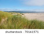 Beach On The Oregon Coast