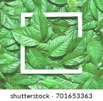 creative layout made of leaves... | Shutterstock . vector #701653363