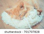 Stock photo little red kitten the kitten lies on the fluffy carpet at home little kitten sleeps close up of 701707828