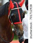 race horse | Shutterstock . vector #701712928