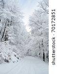 White Pathway Through Frozen...