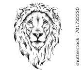 ethnic hand drawing  head of... | Shutterstock .eps vector #701732230