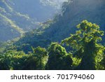 sunset in the high jungle | Shutterstock . vector #701794060