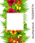 tropical hawaiian background... | Shutterstock . vector #702009574