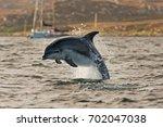 coll island  scotland  hebrides ... | Shutterstock . vector #702047038