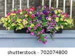 a colorful flower window box... | Shutterstock . vector #702074800