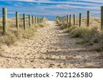 A Sandy Path Between Grassy...