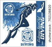 diving club vector illustration ... | Shutterstock .eps vector #702138820
